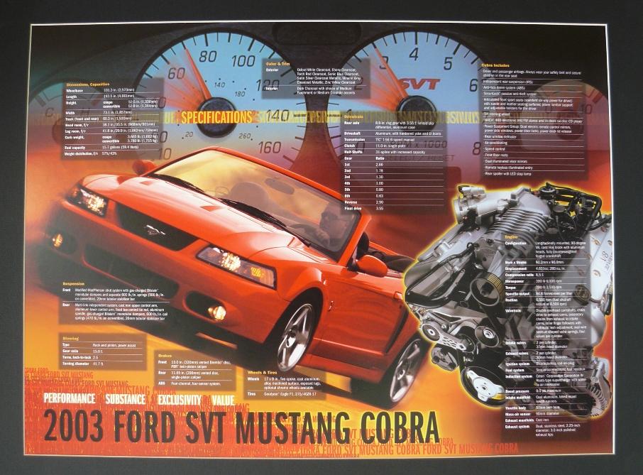 Mustang Terminator Poster