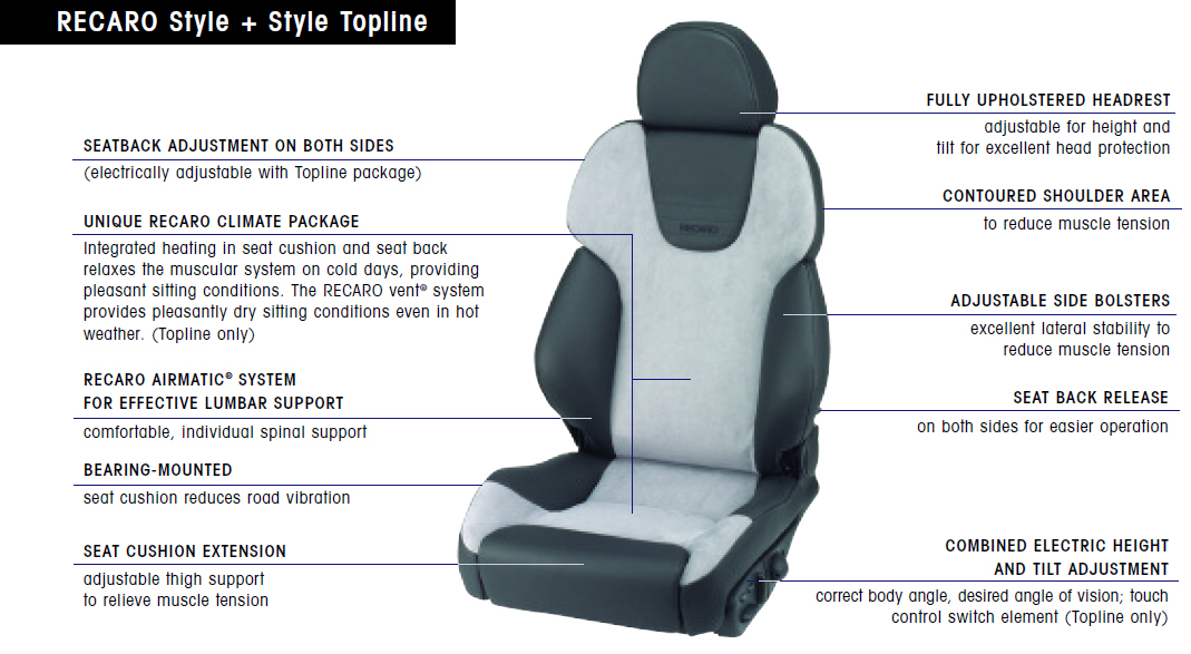 recaro seat upgrade Snake Skeleton Diagram